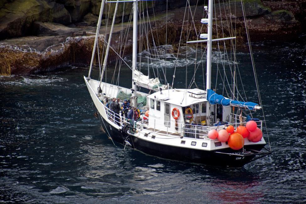 C'est à bord de Golden Fleece, solide ketch, que Jérôme Poncet et sa famille écument les mers australes © Céline Blanchard