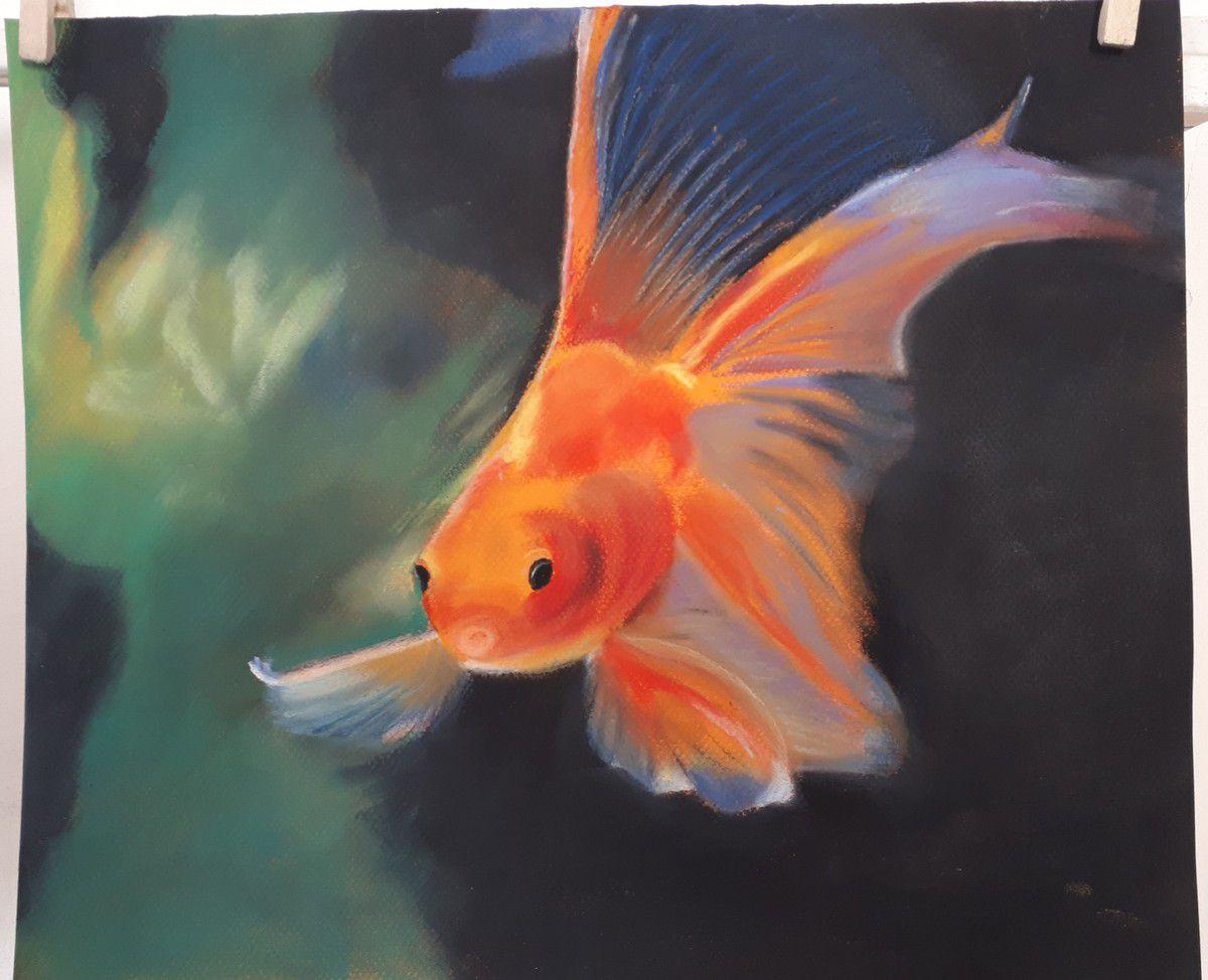 Cours de Fabienne des 24 mai et 7 juin : les pastellistes sont au top, comme des poissons dans l'eau!