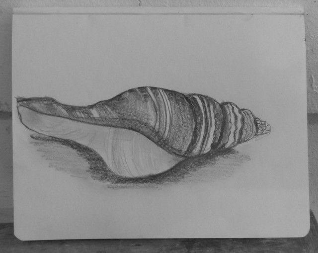 Un avant-goût de plage à l'atelier dessin