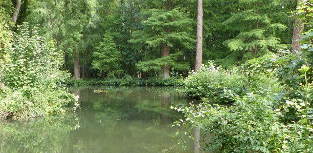 Balade au Domaine départemental de Montauger
