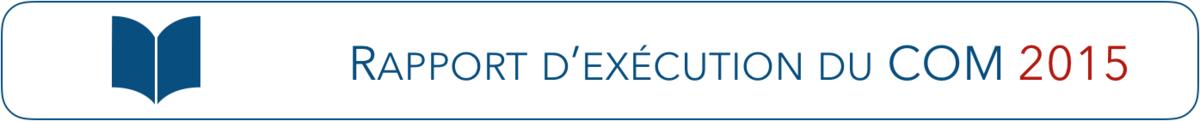 Rapport d'exécution du COM de France Médias Monde en 2015
