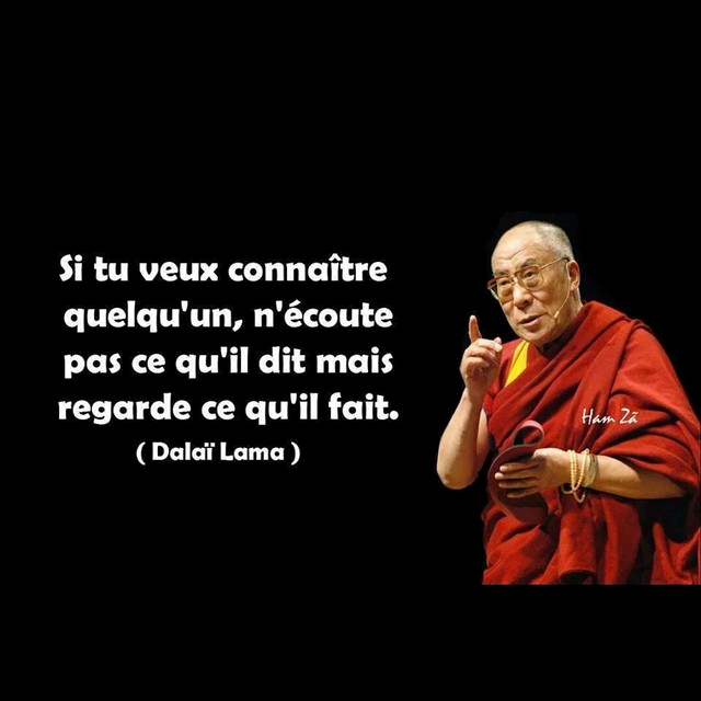 Plus adapté Dalaï Lama - 52 Citations - La vache rose SO-69