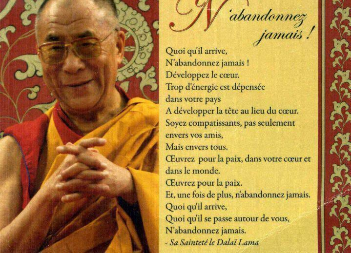 Extraordinaire Dalaï Lama - 52 Citations - La vache rose YS-62