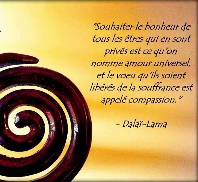 Remarquable Dalaï Lama - 52 Citations - La vache rose AK-22