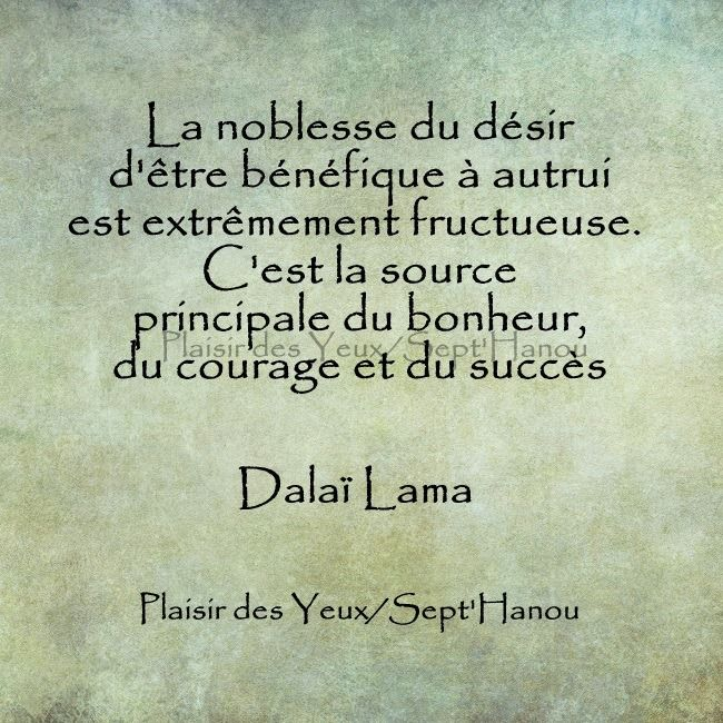 Ultra Dalaï Lama - 52 Citations - La vache rose UY-95