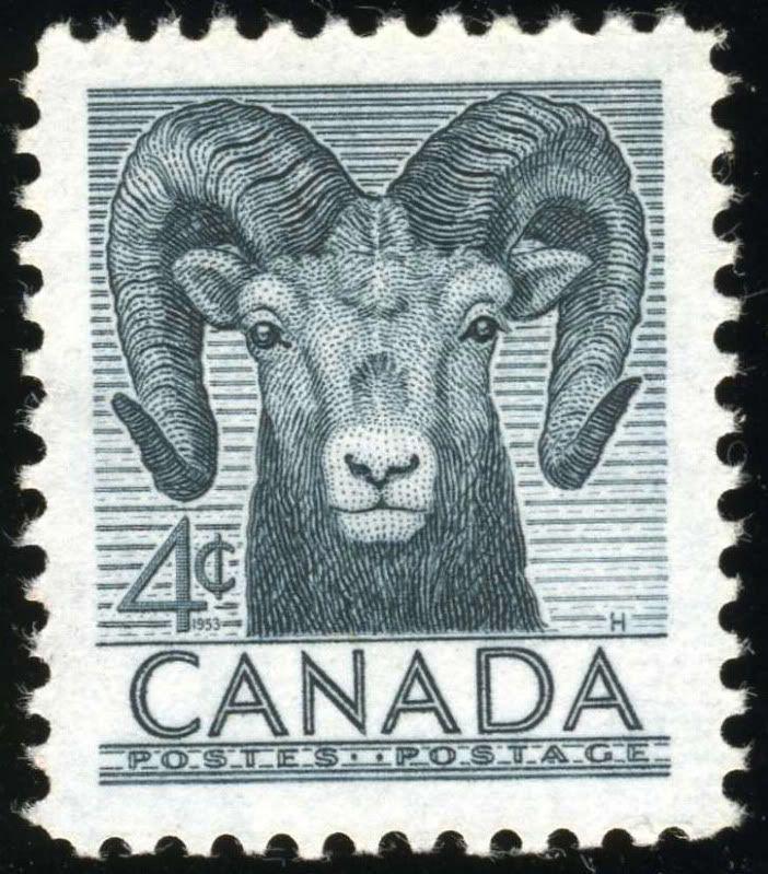 Le mouflon