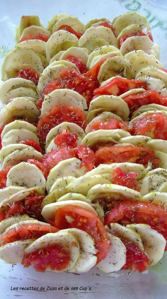 http://lesrecettesdezazaetdesescops.over-blog.com/2016/09/tian-de-legumes-omnicuiseurvitalite.html