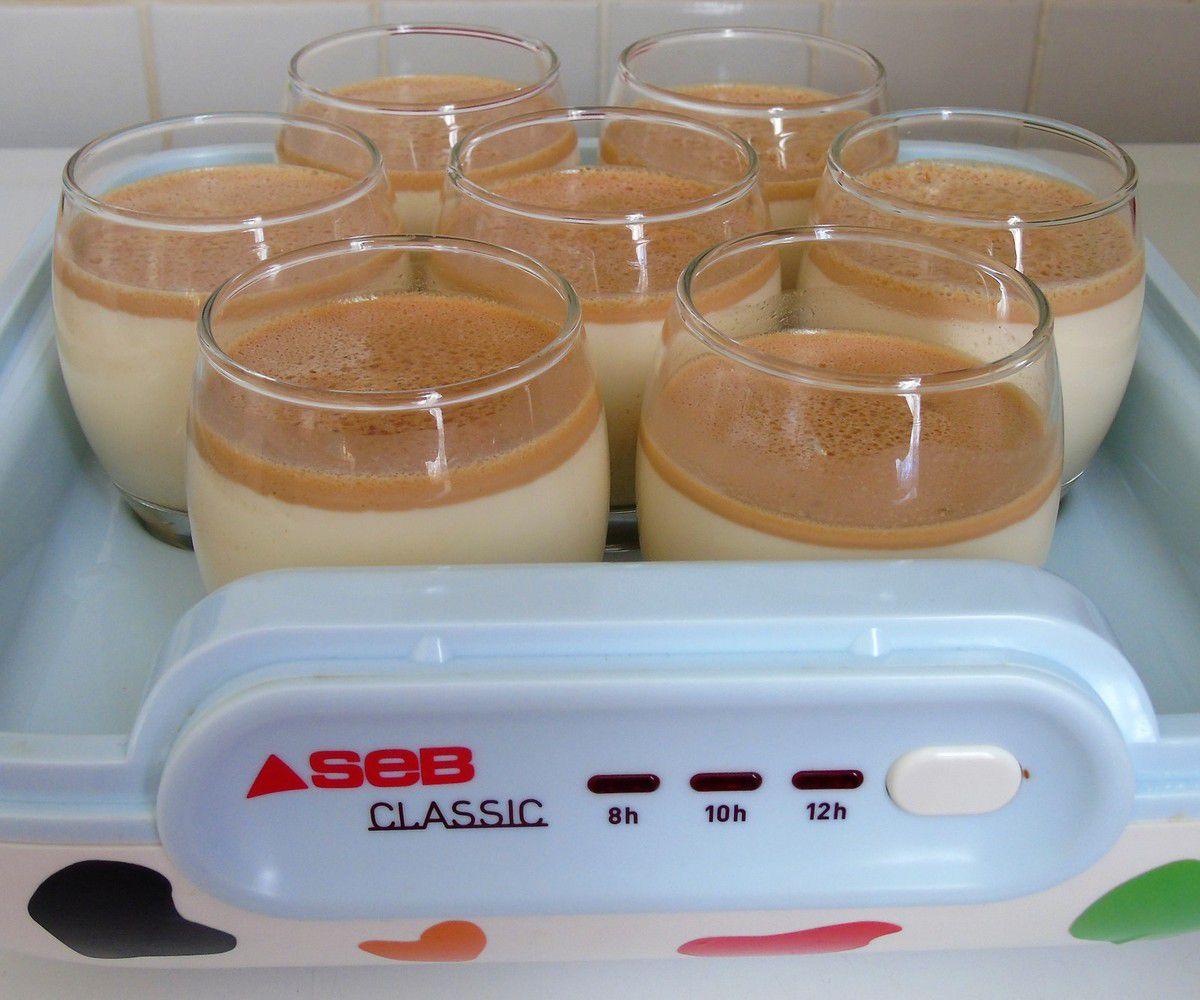 Yaourts à la crème de salidou