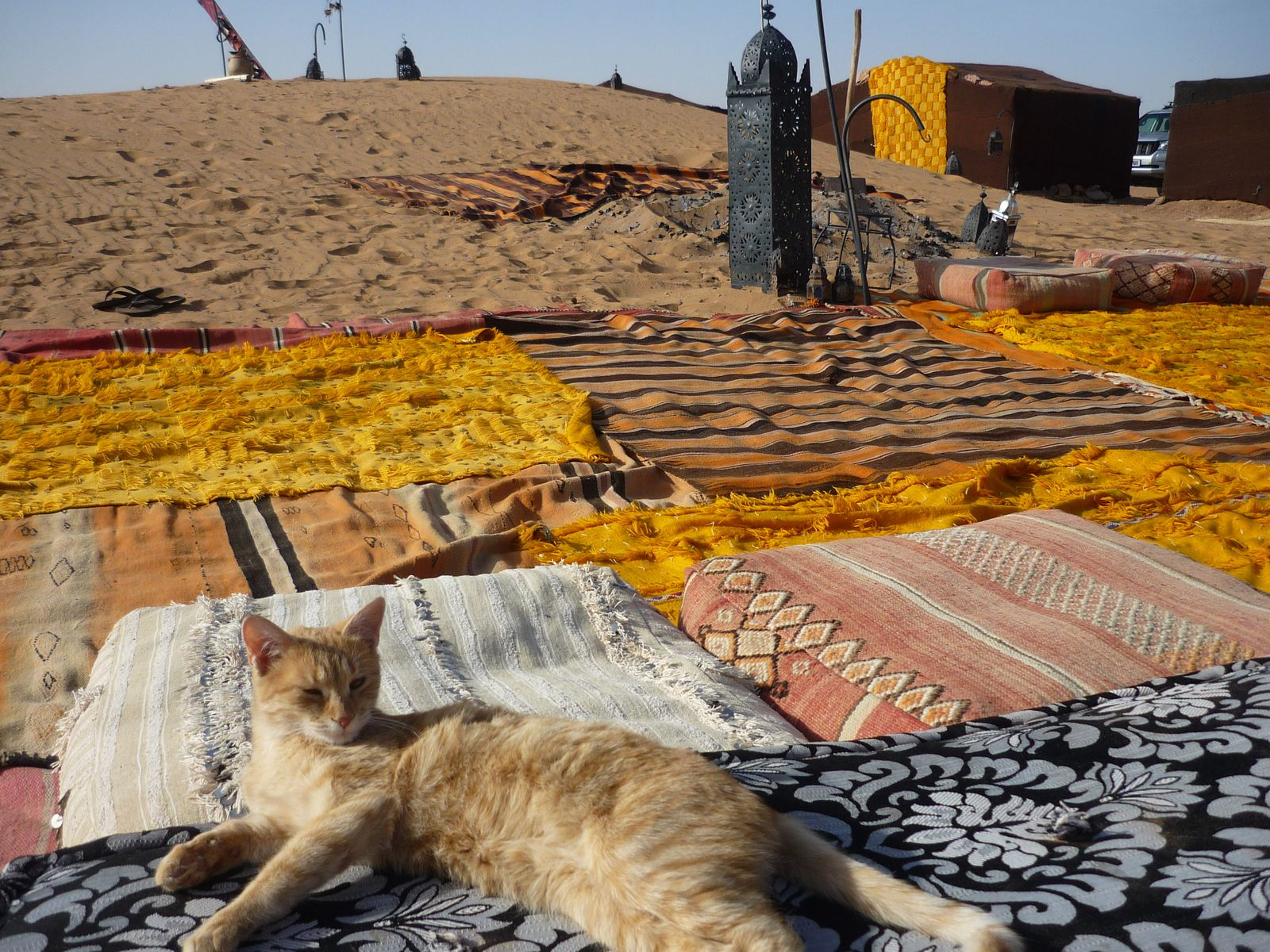 2eme soirée dans le désert Erg Lihoudi