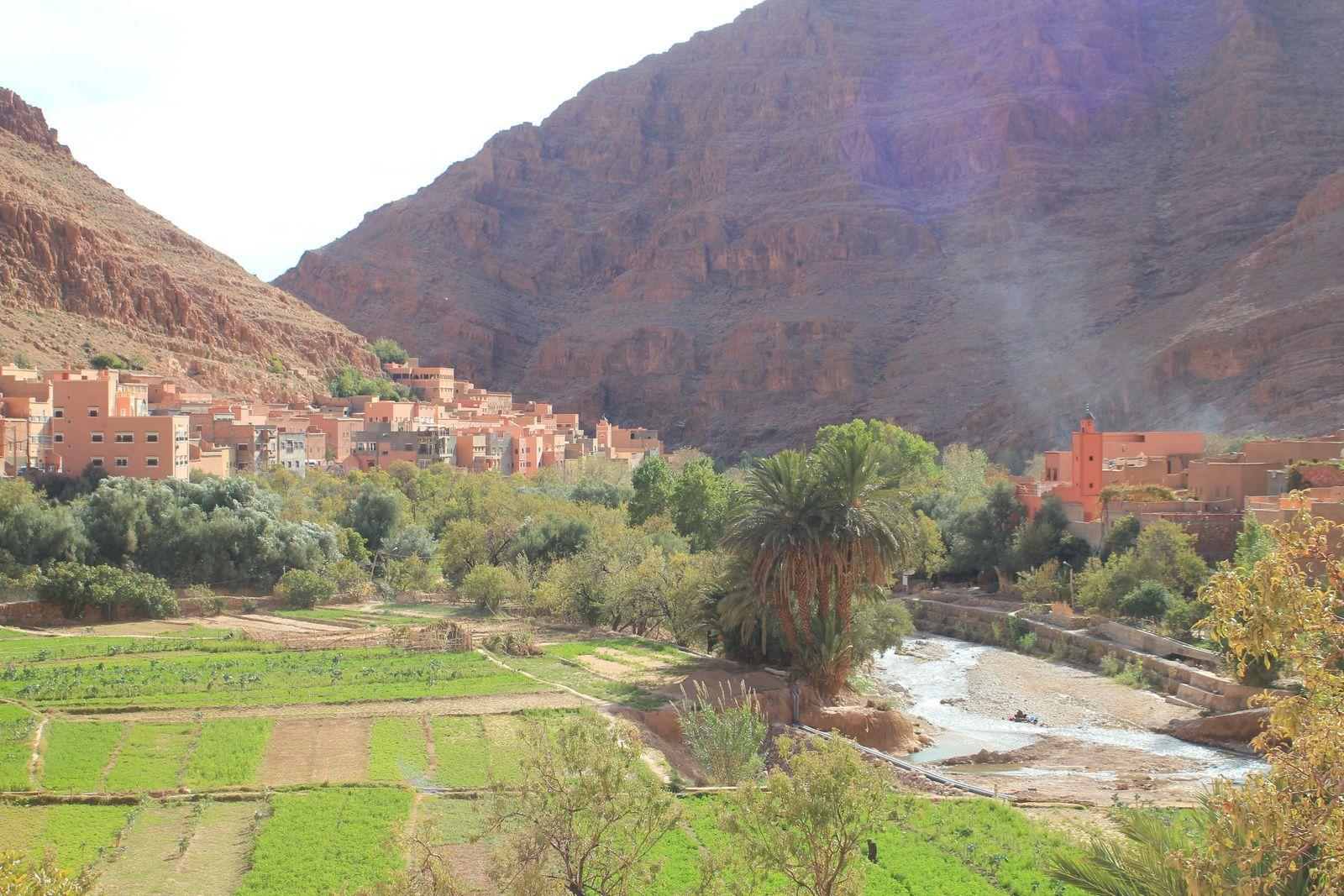 Source des Poissons Sacrés et panorama dans les Gorges de la Todgha