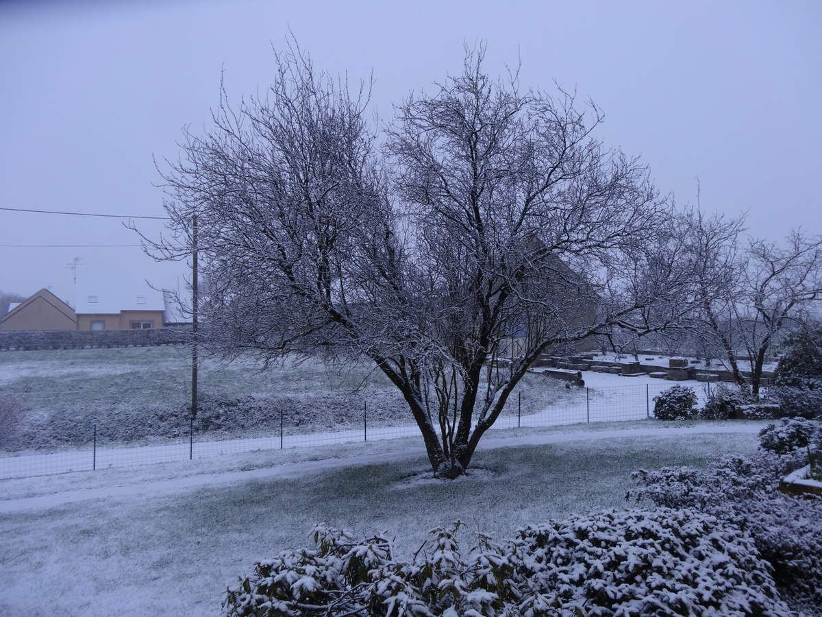 Nous avons eu un peu de neige hier matin, fondue dès l'après midi.