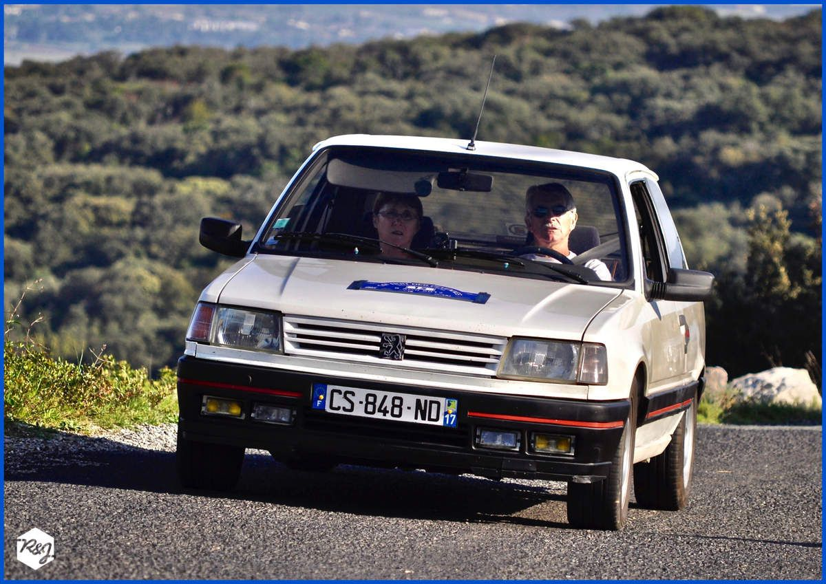Pierre et Mercédès TARTIERE - Peugeot 309 GTI de 1989