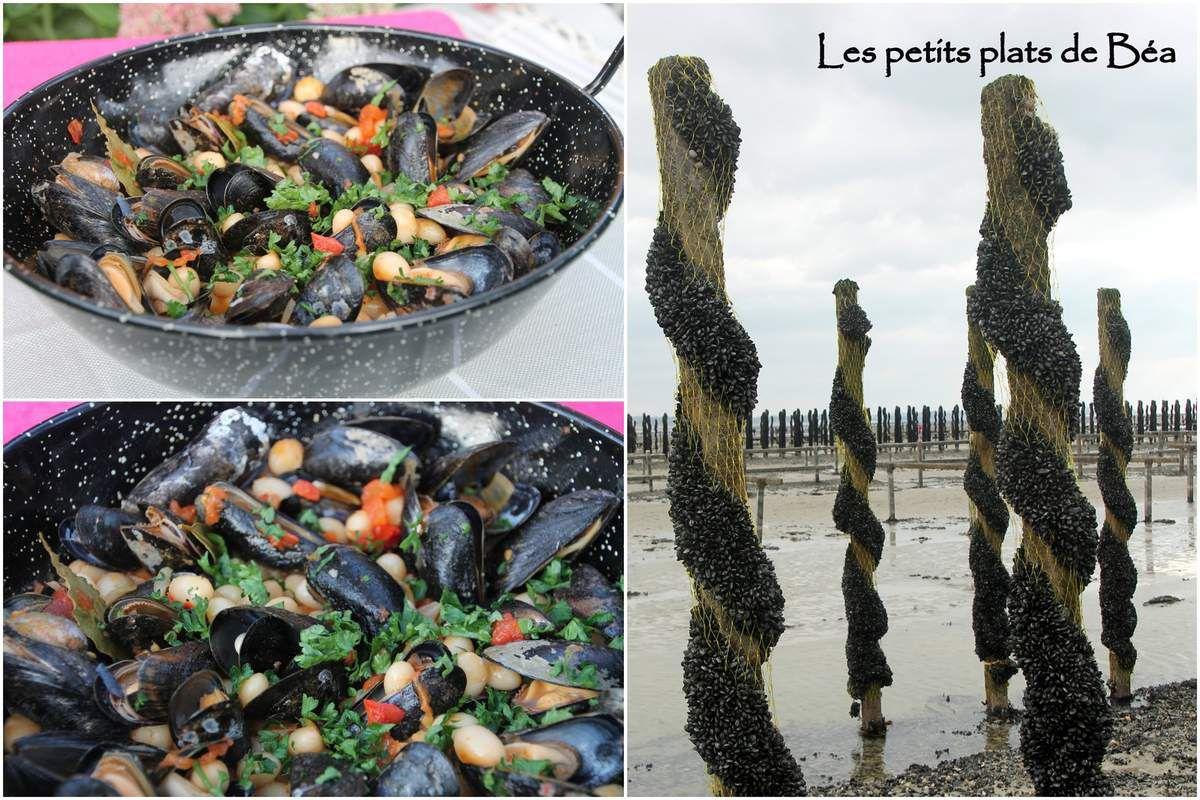 Cocos de Paimpol aux moules et au jambon sec - Bretagne (4) Guidel dans le Morbihan