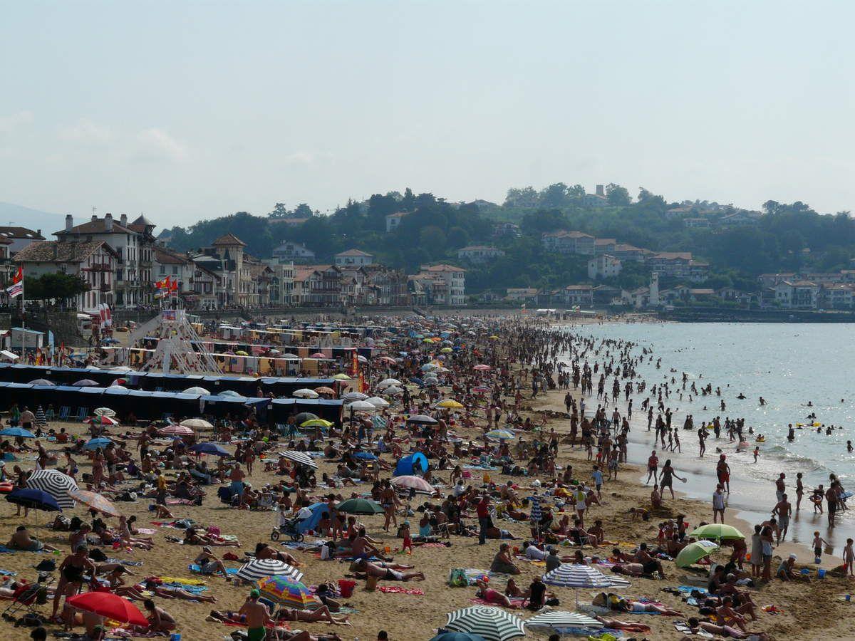 Axoa -  Pays Basque (2)