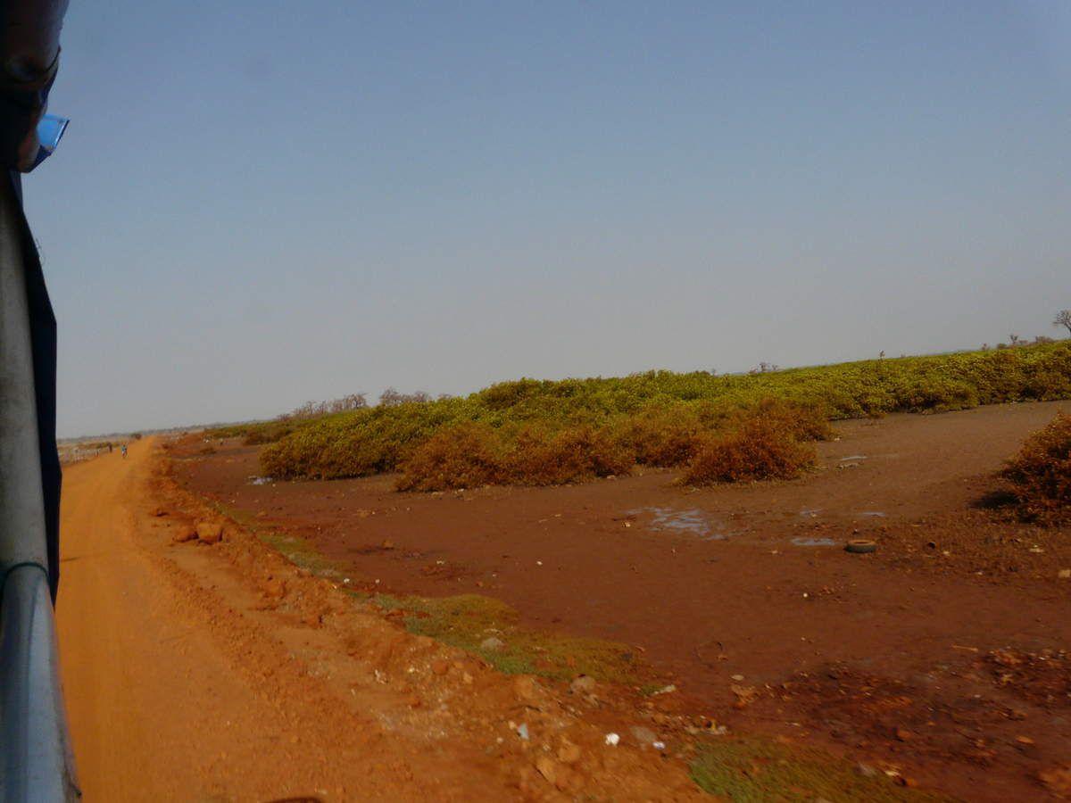 On reprend les pistes, la belle terre africaine, bien colorée, et surtout tout au long de cette piste on peut assister à une multitude de scènes de vie.