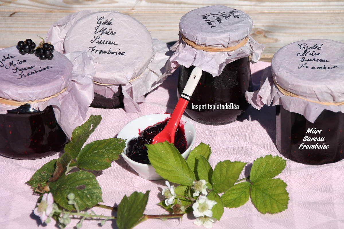 Gelée de mûres, sureau et framboises Bretagne (8) Le Loch à Guidel