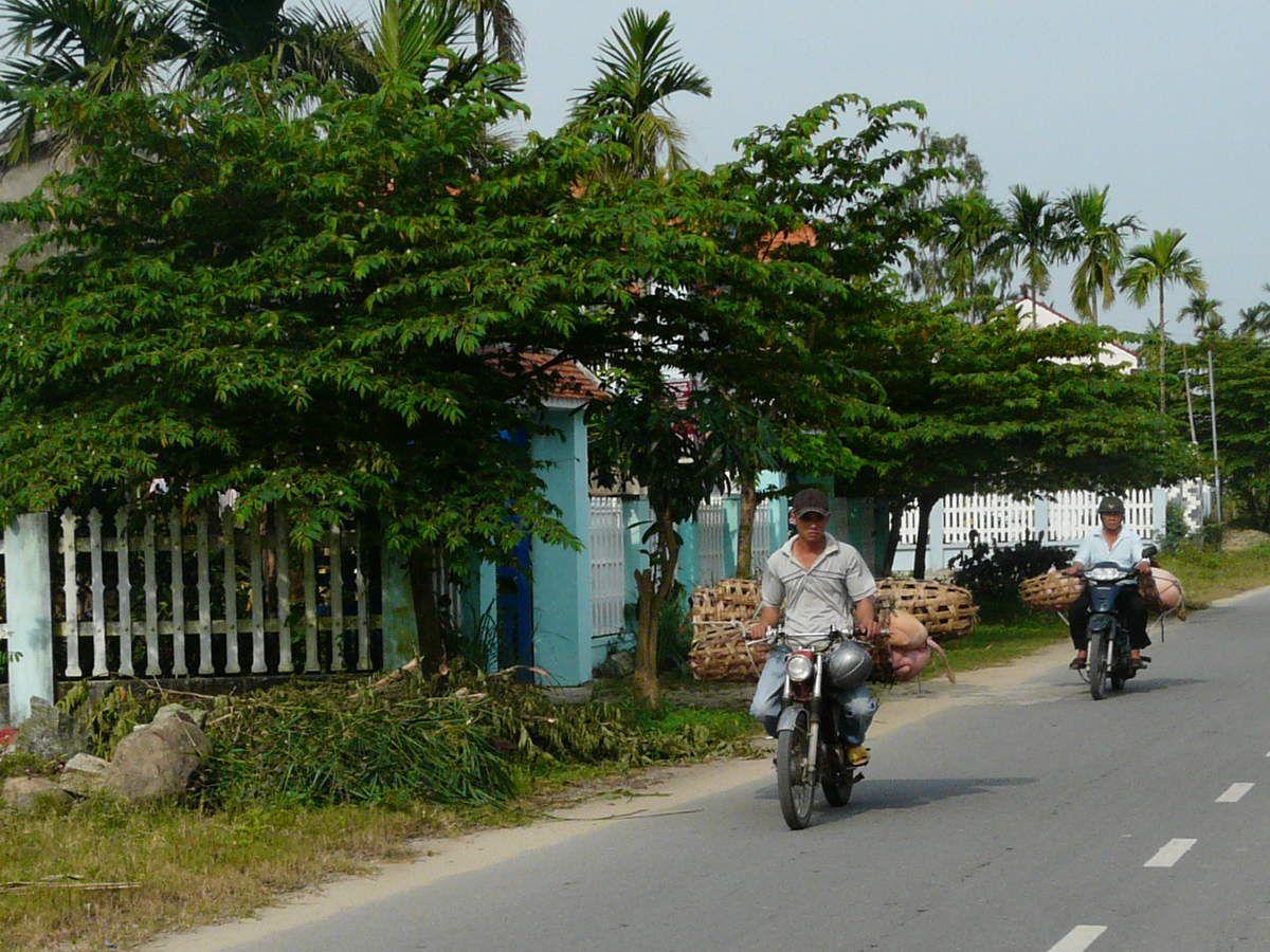 Pot au feu thaï - Vietnam : les deux roues