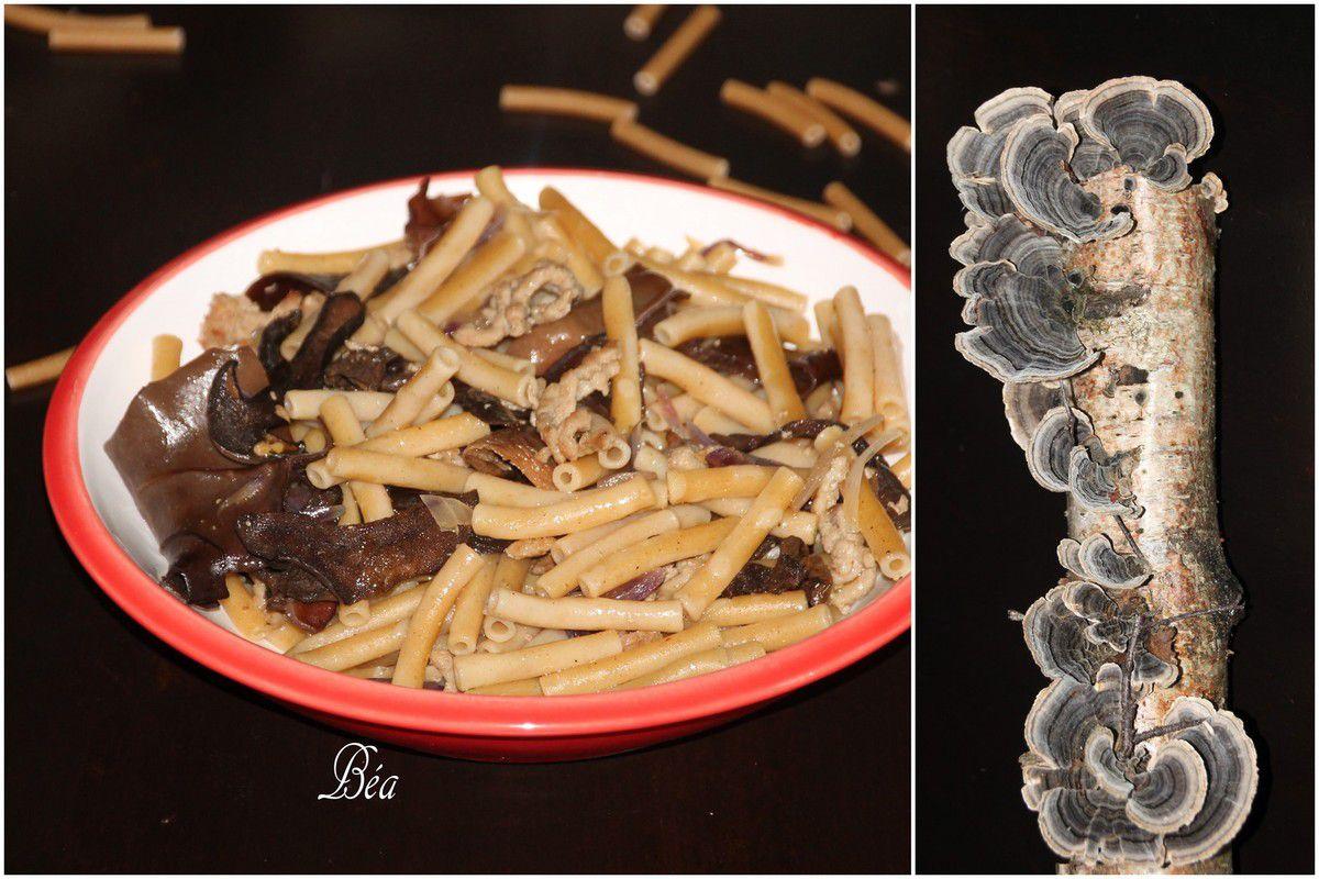 Macaroni aux champignons forestiers