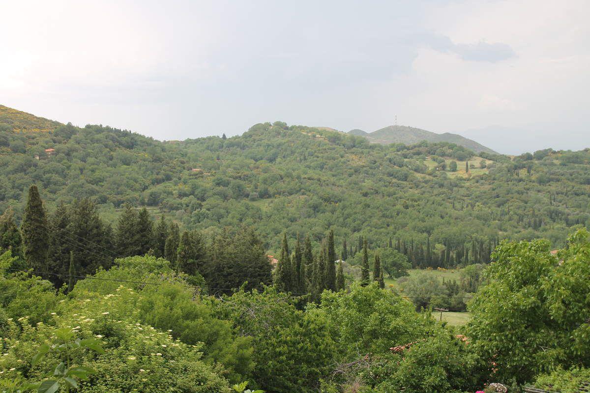 Glace au kadaïf - Grèce (11) - Andritséna et Olympie