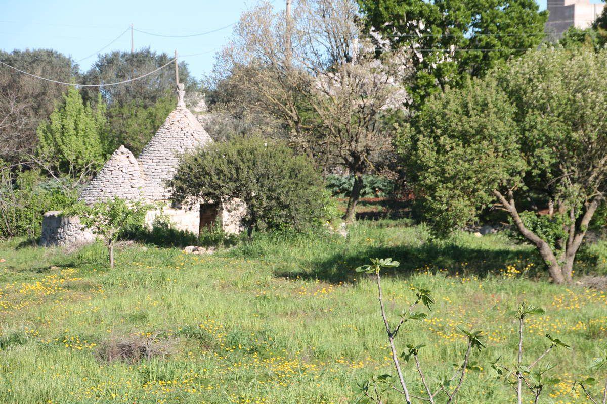 Cavatelli aux asperges vertes et à la sauge - les Trullis des Pouilles en Italie