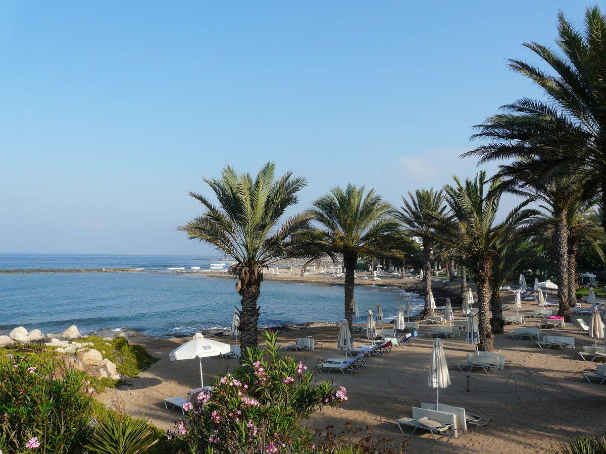Zaalouk et halloumi - Chypre
