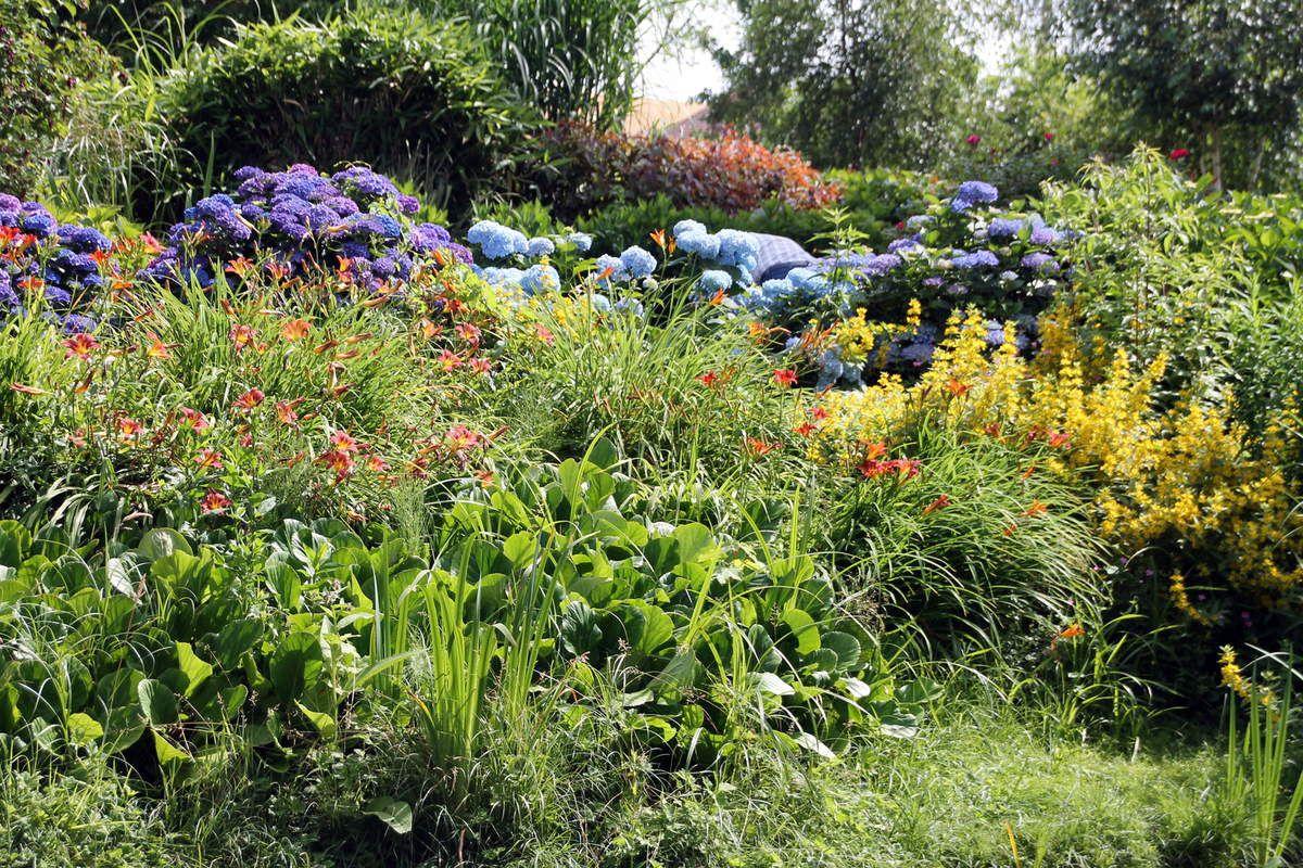 Farfadelles à la crème de courgette et sot-l'y-laisse laqués au sirop de fleurs de sureau - Balade Picarde - le jardin André Van Beek