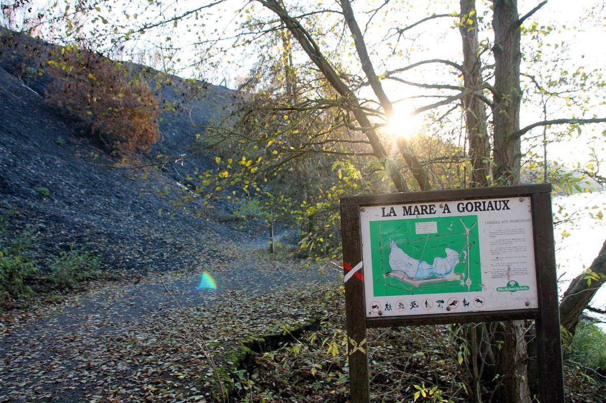 Potée à l'andouille et chou kale - Balade régionale, la mare à Goriaux