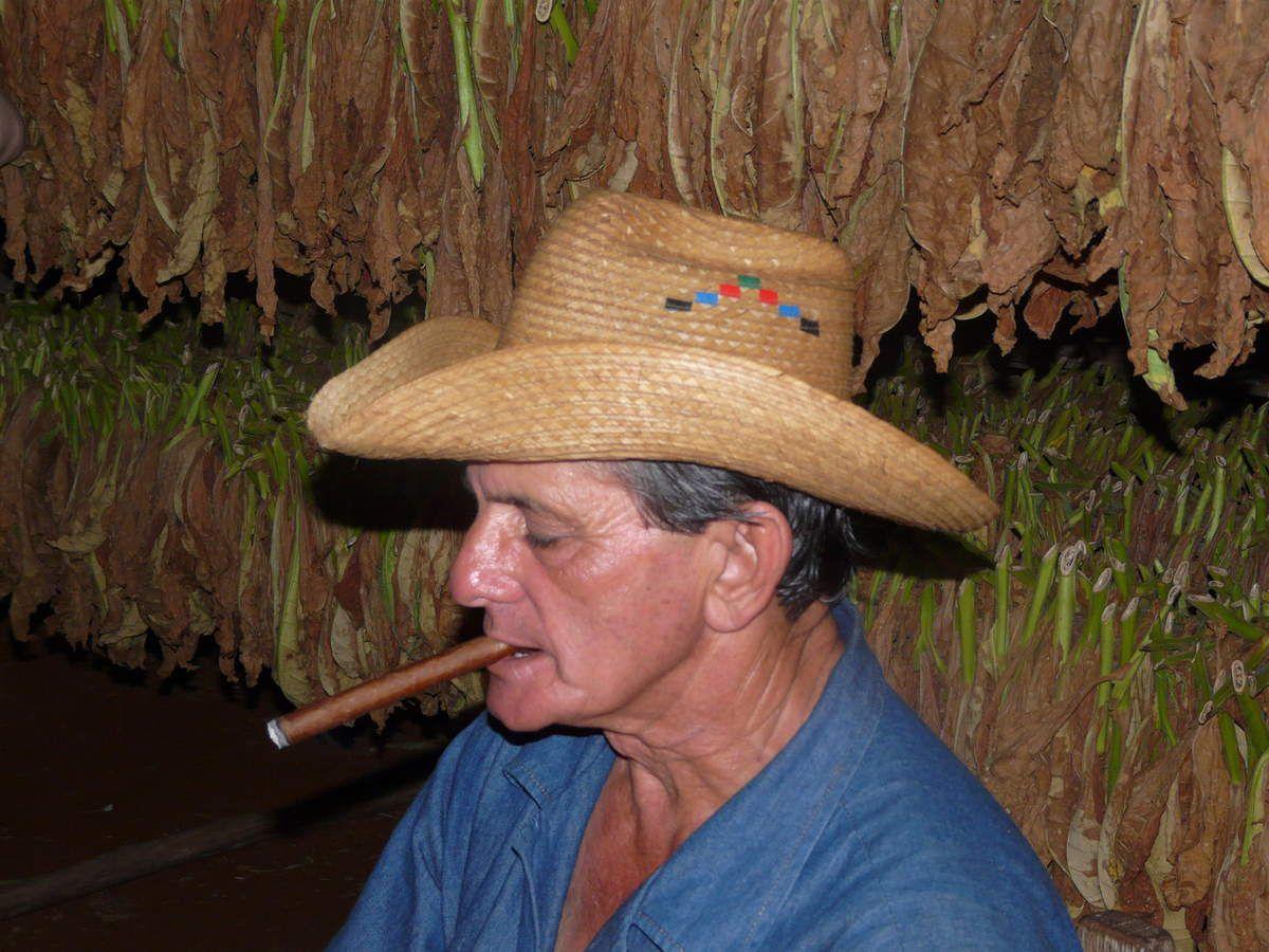 le tabac et les cigares