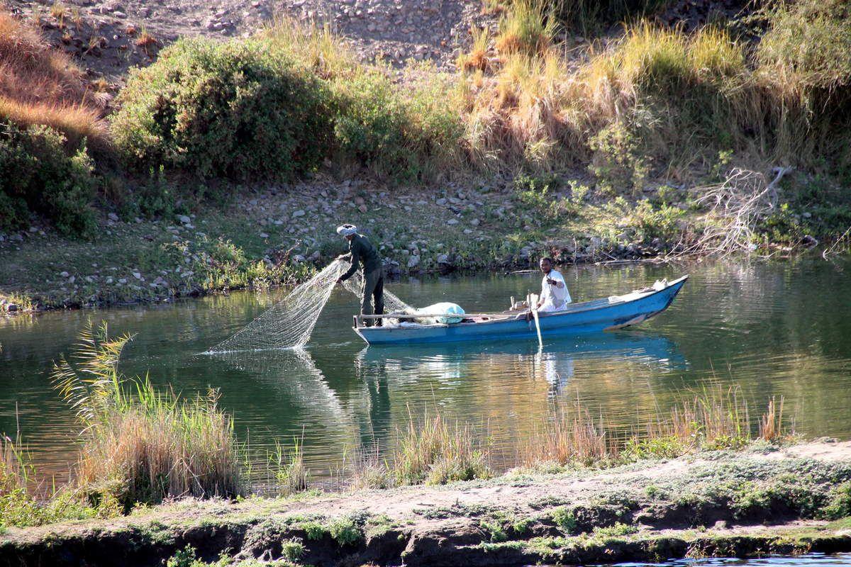 Falafels aux betteraves rouges - Balade Egyptienne - Au fil du Nil