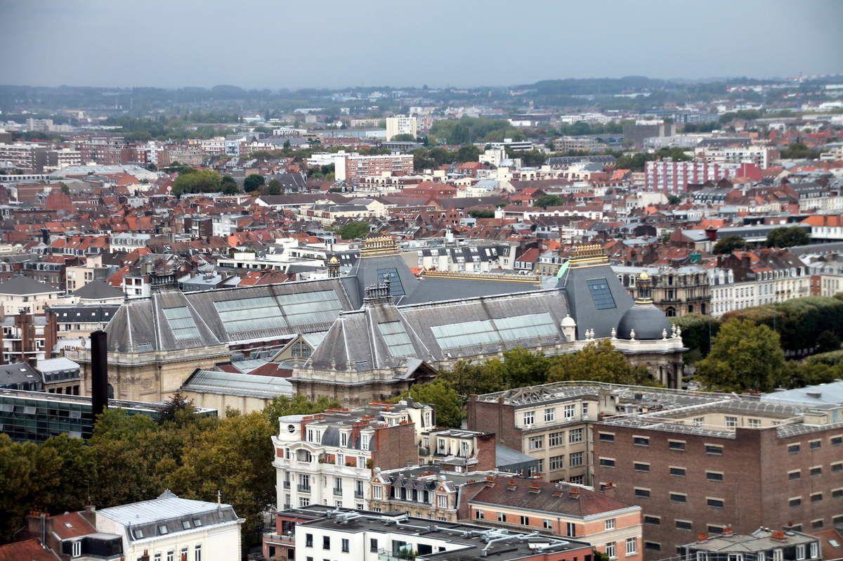 Tarte aux poireaux et au vieux Lille - balade régionale en haut du beffroi de Lille