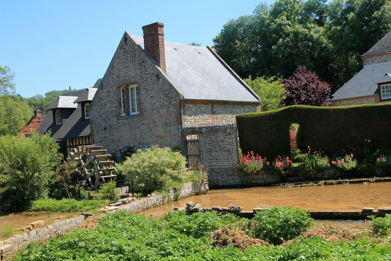 Ravioli de Neufchâtel au thym fleur, bouillon d'herbes du jardin, huile de noisettes - balade normande à Veules les Roses