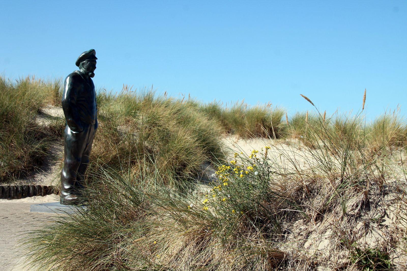 Mulet à la provençale - Balade sur la côte belge à La Panne