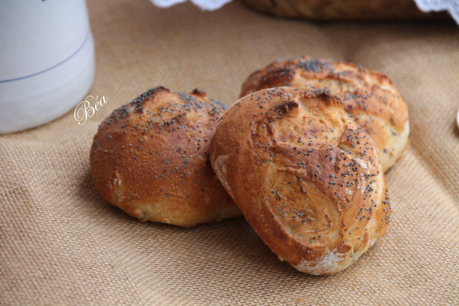 Petits pains aux graines à la farine d'antan