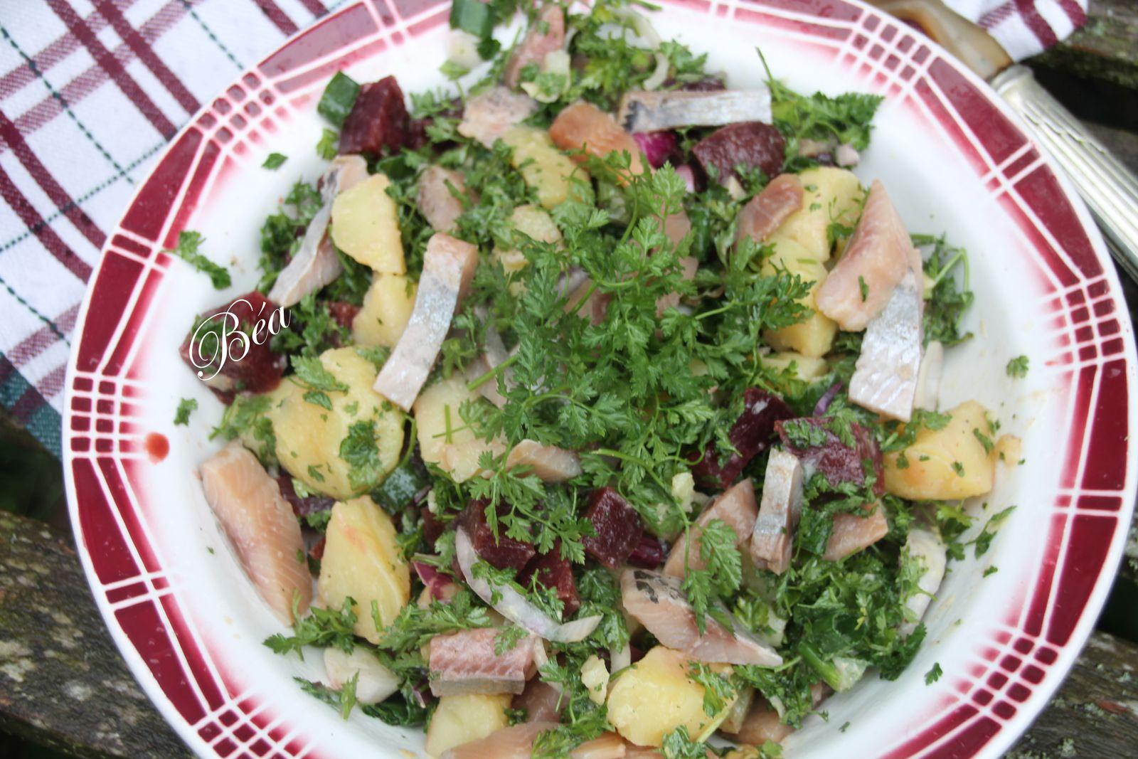 Salade de pommes de terre harengs fumés au cerfeuil