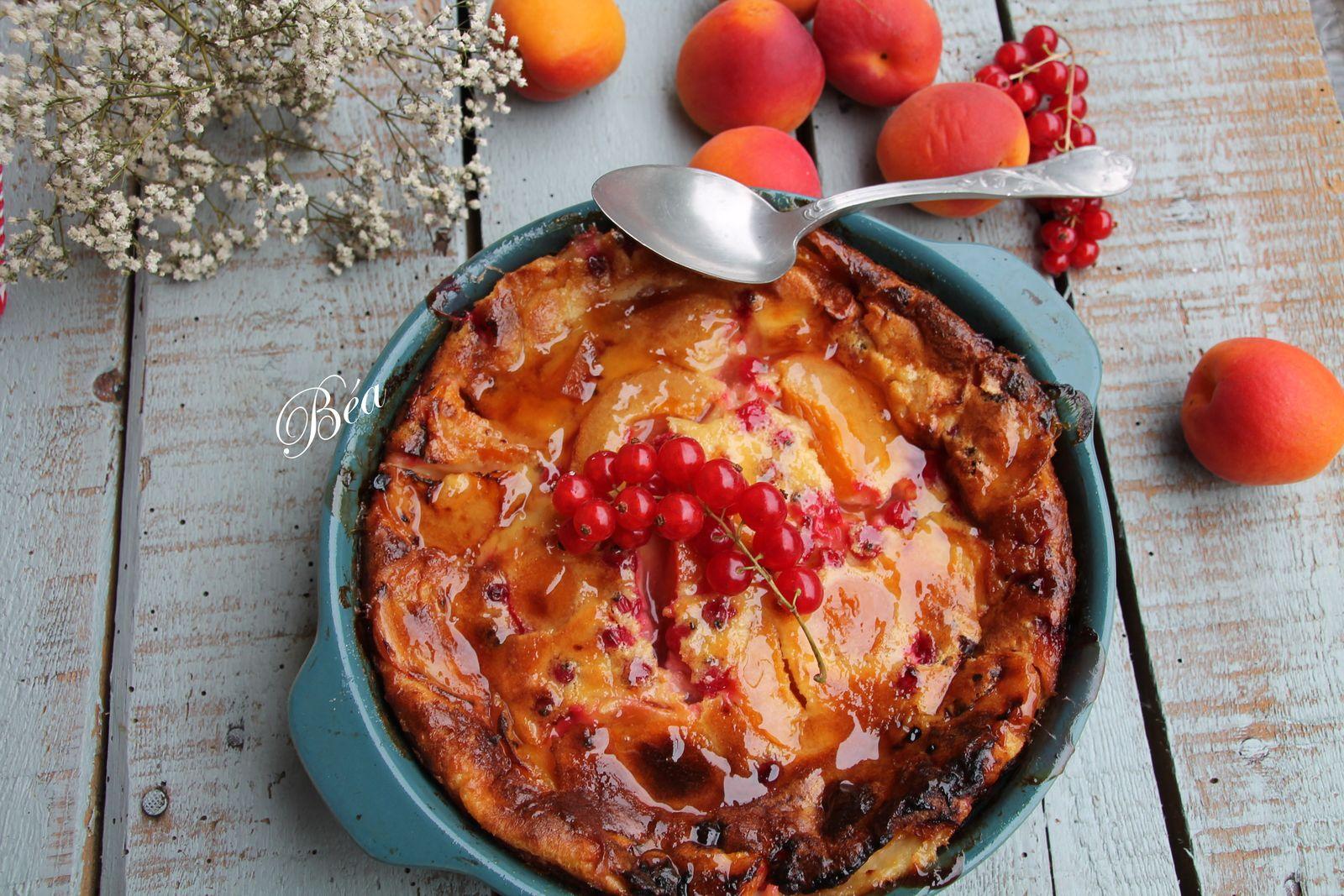 Flognarde aux abricots et aux groseilles - balade périgourdine à Périgueux