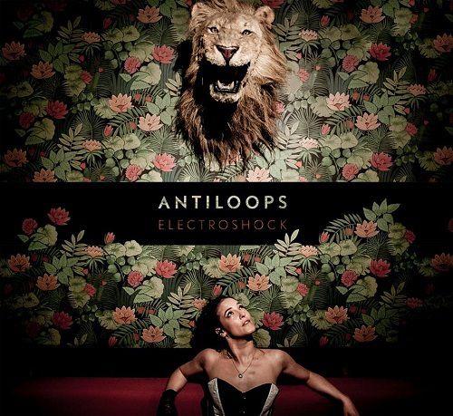 Antiloops vous présente son nouvel album baptisé « Lucid Dream » !