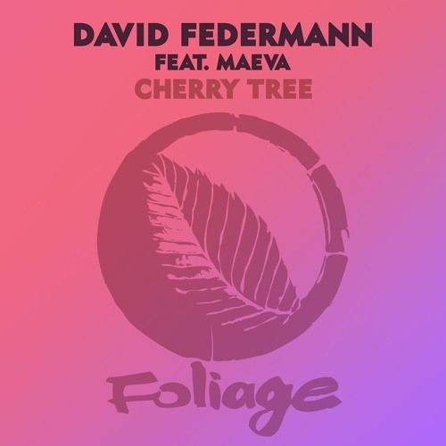 David Federmann dévoile un EP de remixes pour son titre « Cherry Tree » !