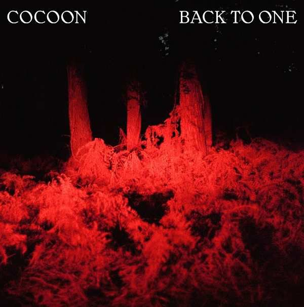 Cocoon s'associe à Clou pour « Back To One » !