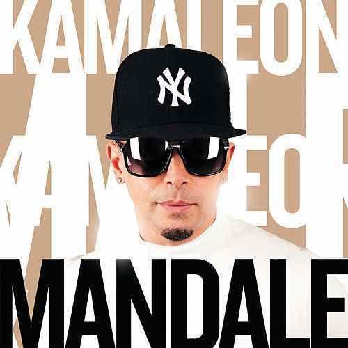 Kamaleon met l'ambiance avec « Mandale » !