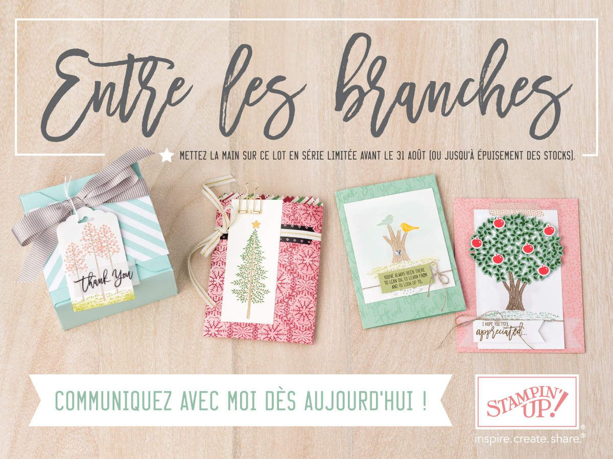 Set ENTRE LES BRANCHES Stampin Up