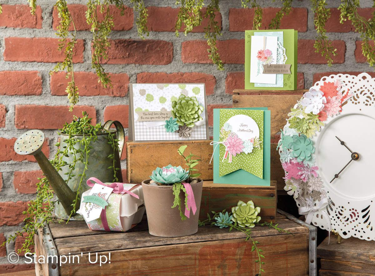 Stampin' Up  Promotions allant jusqu'a  60%