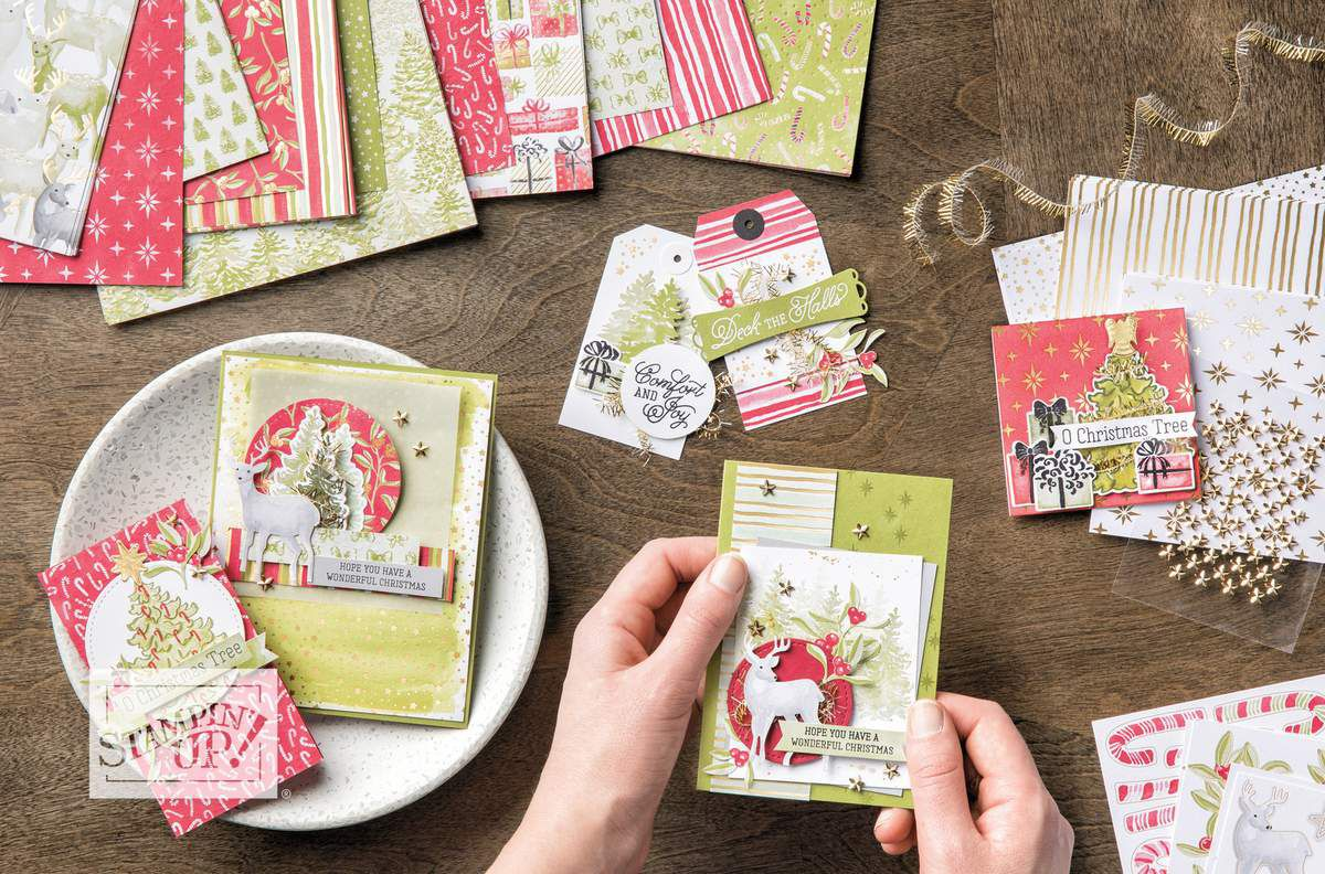 stampin'Up! vidéo  gratuite  Collection Le plus beau des Noëls /Most Wonderful Time Product Medley | Stampin' Up! | 2019 Holiday Catalog