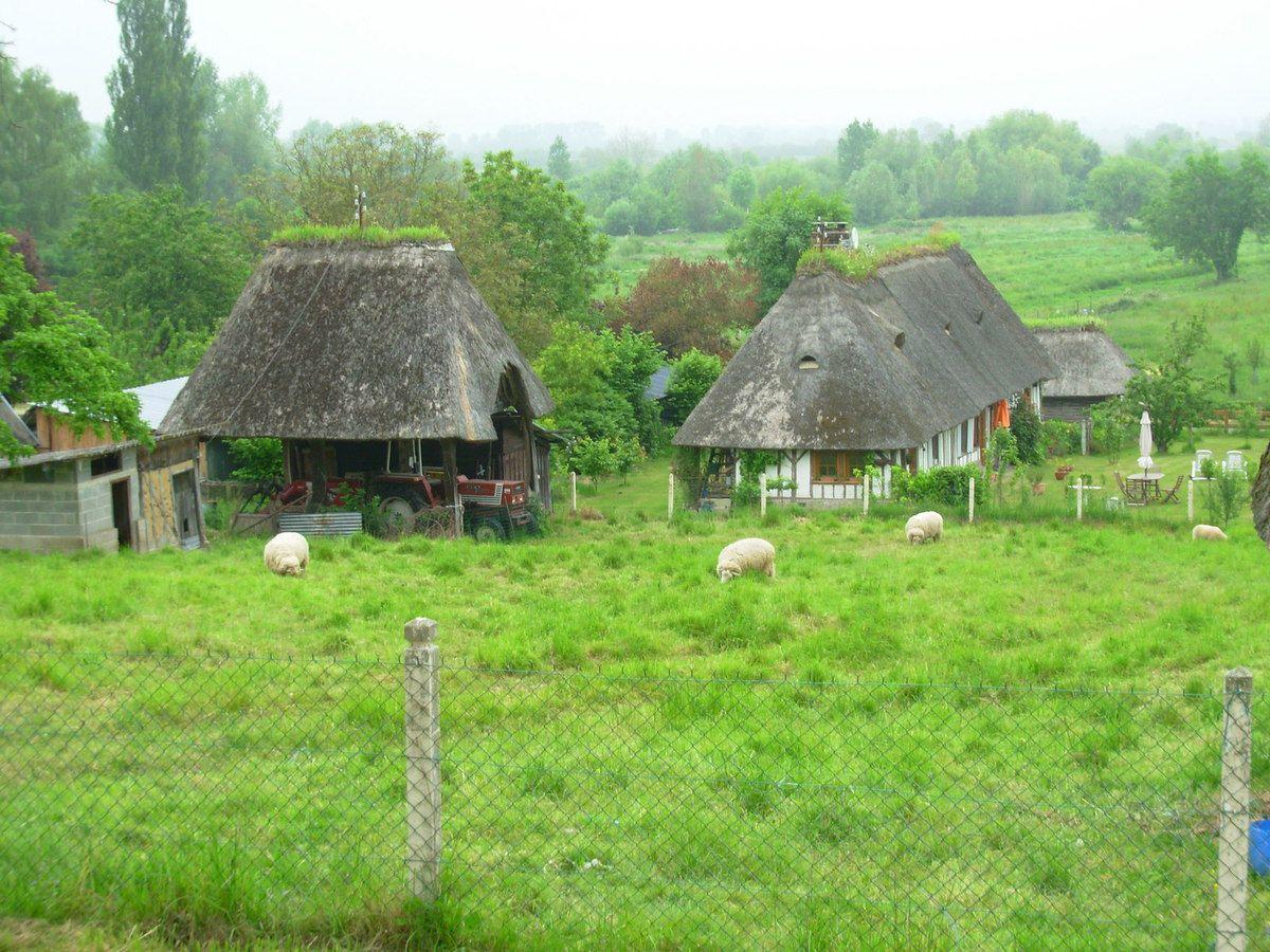 Eure - Le Marais Vernier et ses Chaumières