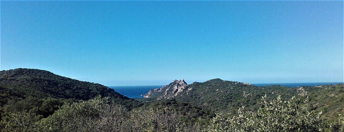 """A mis chemin entre Sartène et Bonifacio, Panorama du """"Cap de Roccapina"""" - Tour génoise et lion du Cap de Roccapina"""