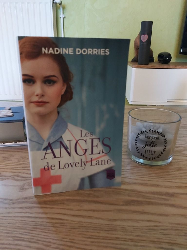 LES ANGES DE LOVELY LANE De Nadine DORRIES