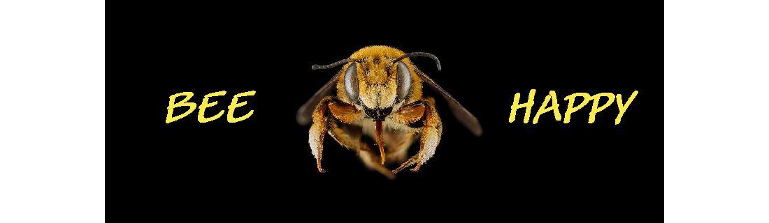 Bees are