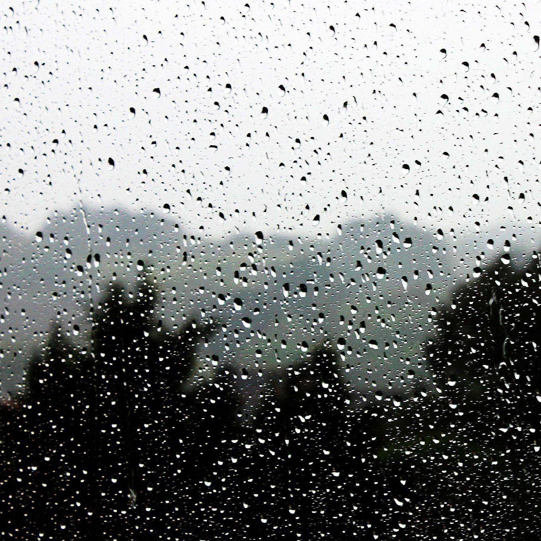 De ma fenêtre - Lundi 20 avril 2020 - 10h28