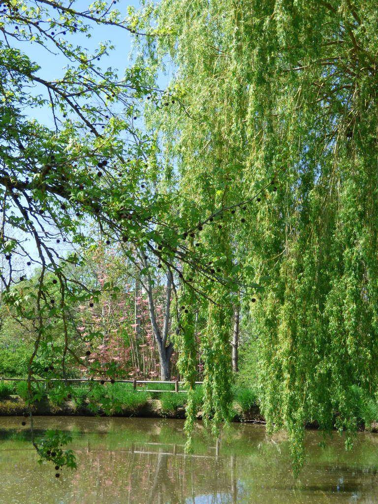 Les Jardins des Martels 2eme partie.