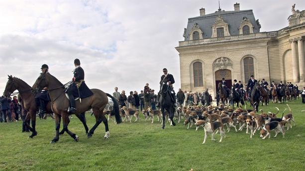 Chasse Royale  et présidentielle de la Saint-Hubert à Chambord