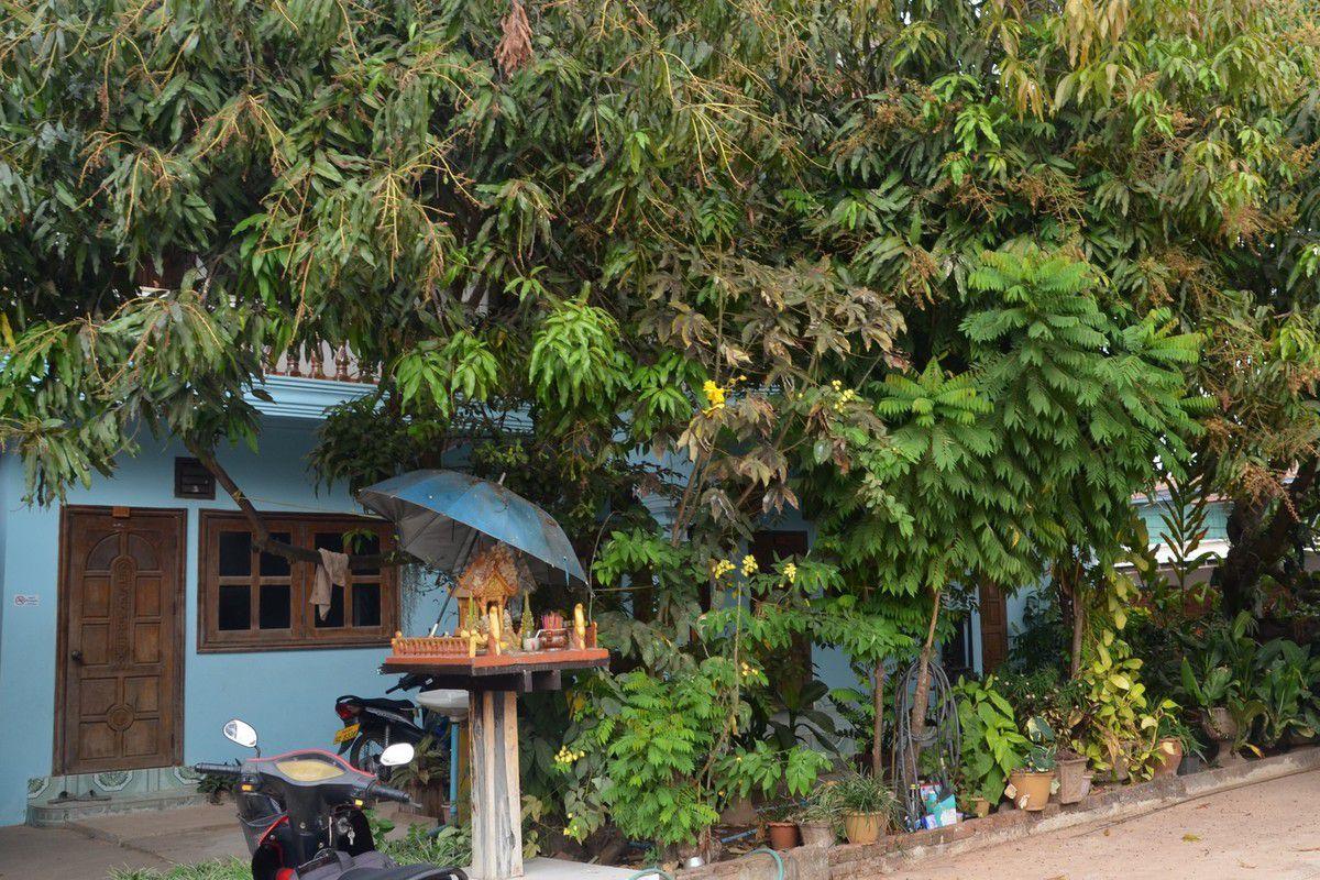 Salavan, une petite ville en dehors des circuits touristiques, un marché surprenant ...